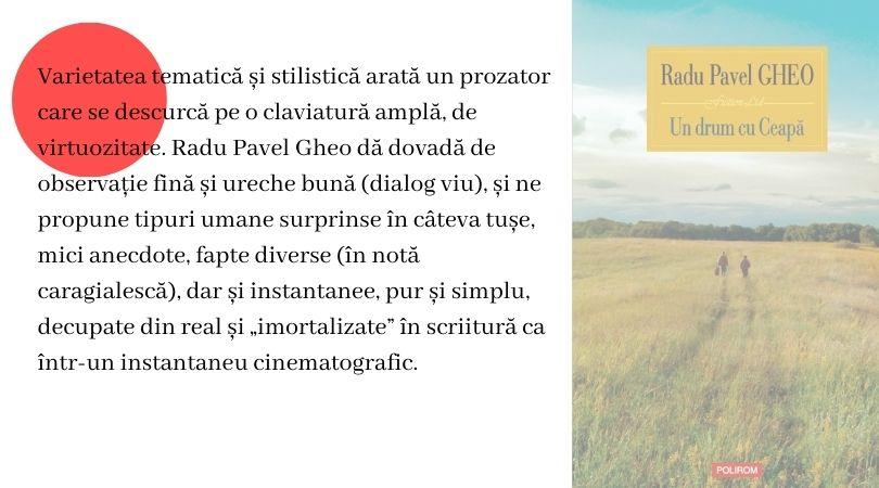 Radu Pavel Gheo Literomania